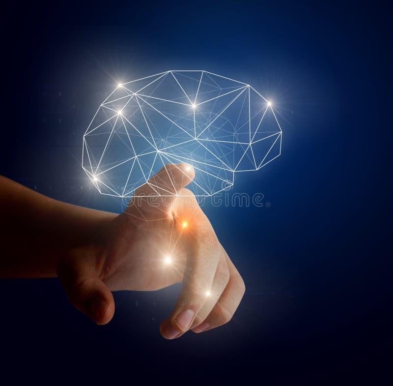 头脑的能力在事务和科学的 库存照片