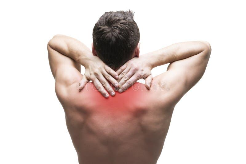 脖子痛 人以腰疼 肌肉机体的男 背景查出的白色 库存图片