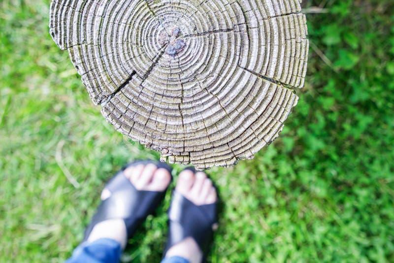 脚与老树桩的selfie在绿草背景 免版税库存照片