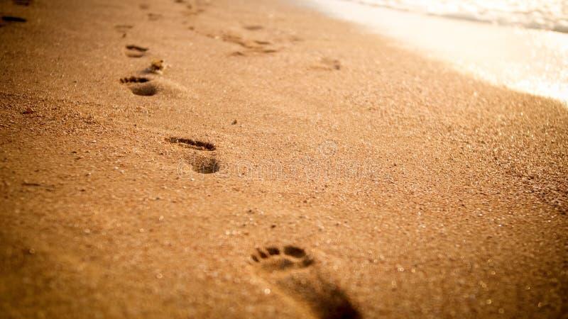 脚印的特写镜头图象在湿含沙海海滩的反对日落天空 免版税库存照片