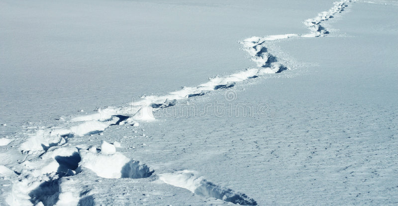 脚印路径雪 免版税库存照片