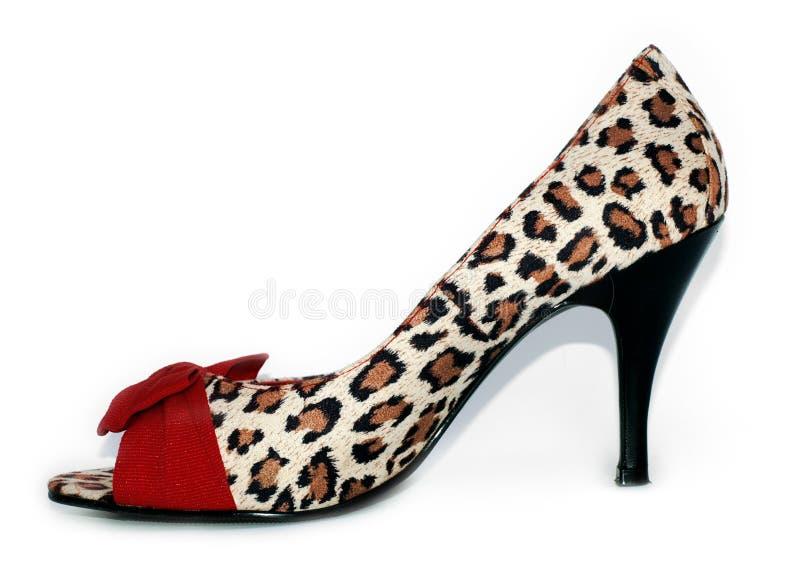 脚跟高夫人豹子打印红色性感的鞋子 免版税库存照片
