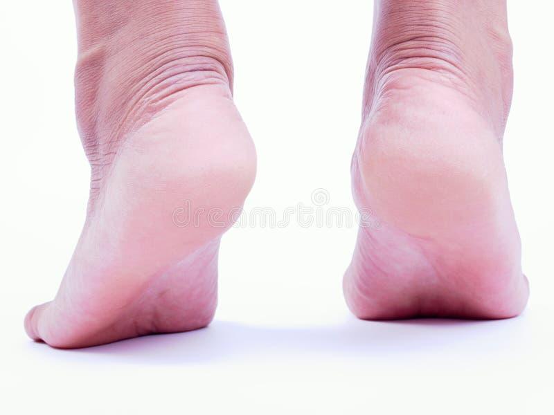 脚跟 库存图片