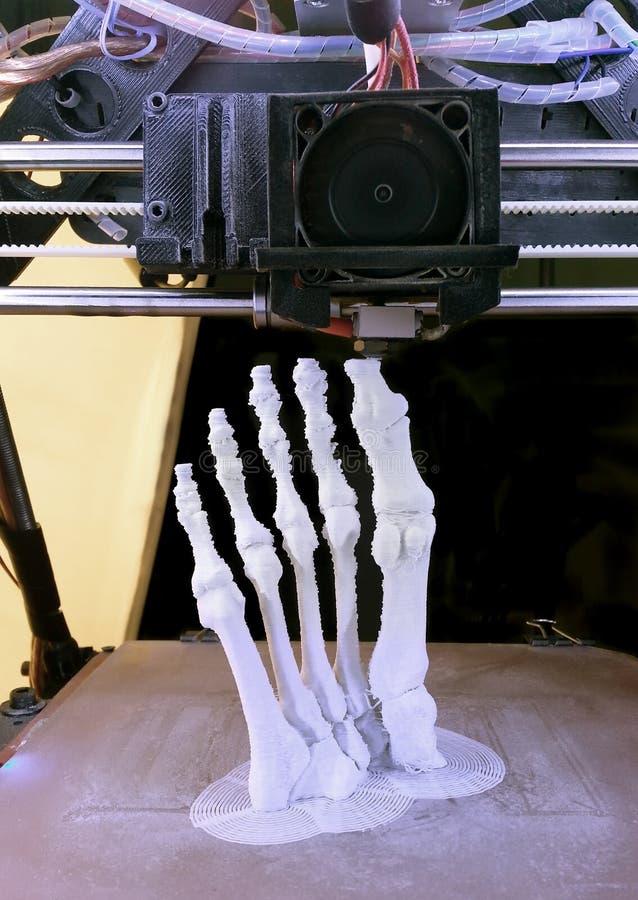 脚骨头打印 免版税库存图片