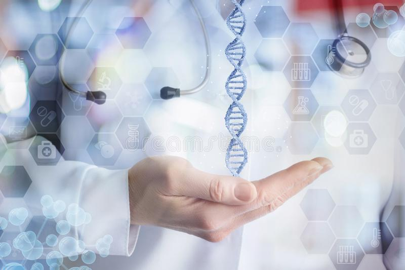 脱氧核糖核酸分子在医生的手上 免版税库存图片