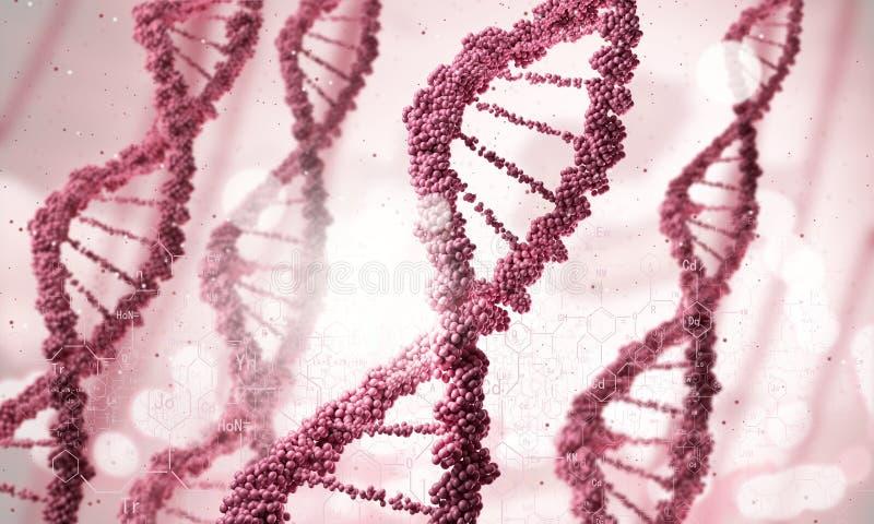 脱氧核糖核酸分子 免版税图库摄影