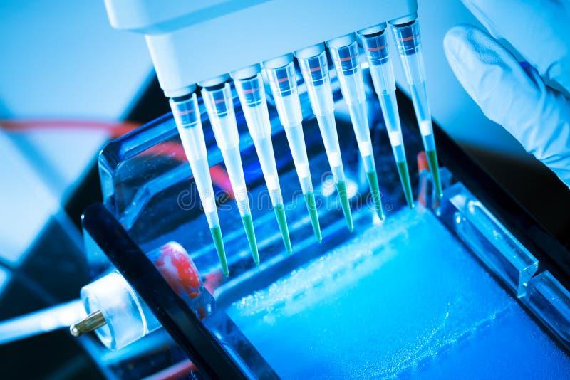 脱氧核糖核酸分析 免版税图库摄影