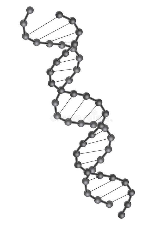 脱氧核糖核酸向量 库存例证