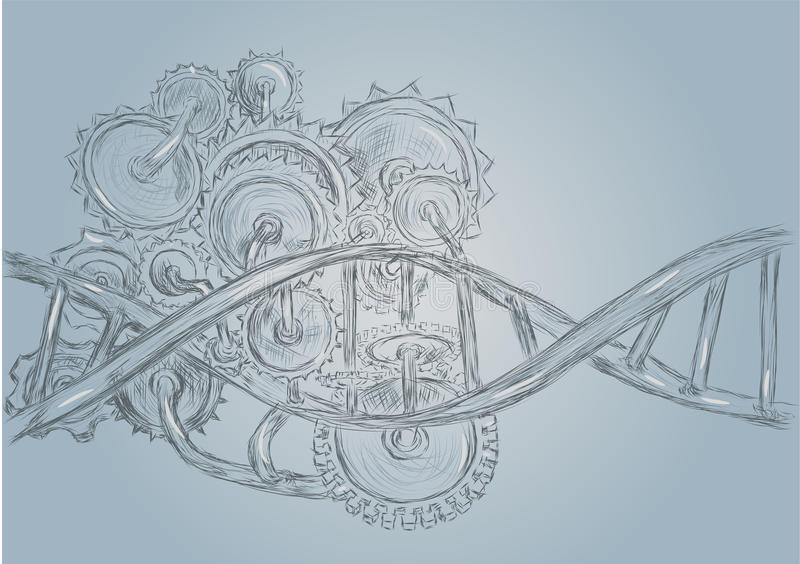 脱氧核糖核酸和齿轮 向量例证