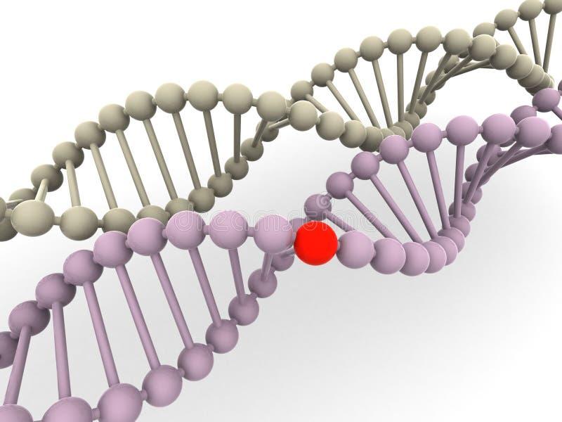 脱氧核糖核酸基因 皇族释放例证