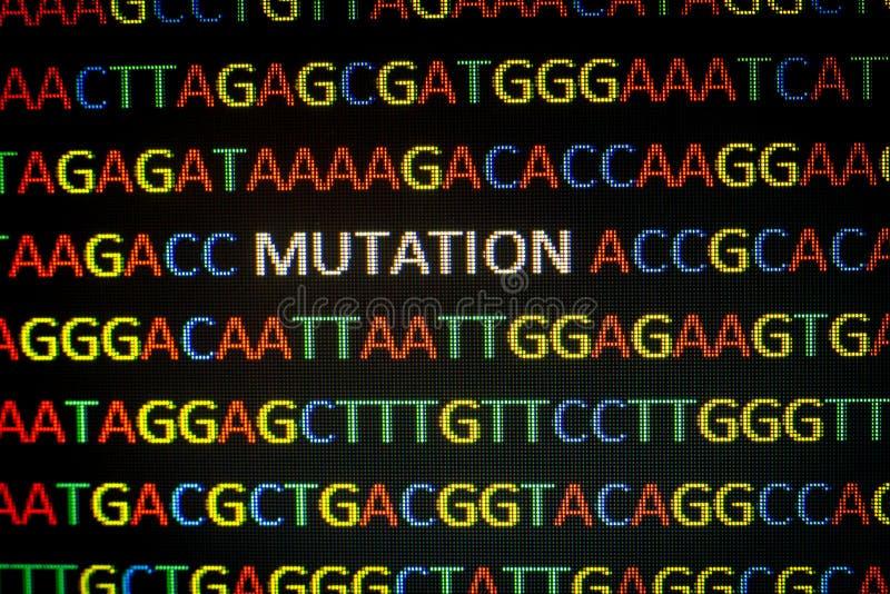 脱氧核糖核酸序列变化 免版税库存图片