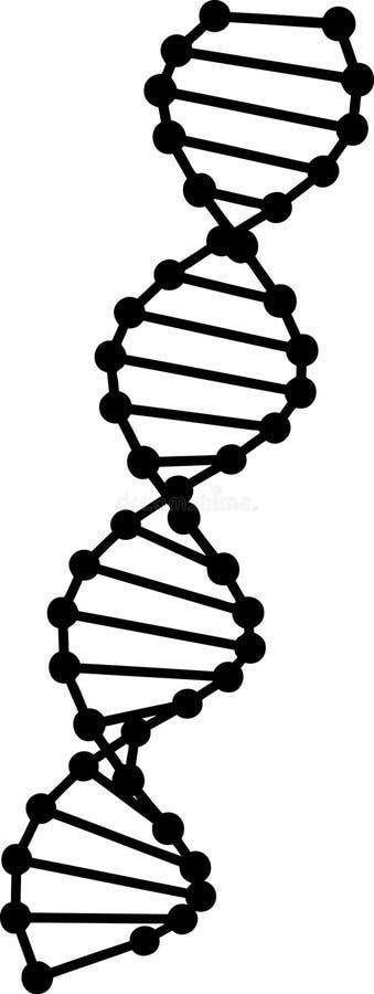 脱氧核糖核酸模型向量 库存例证