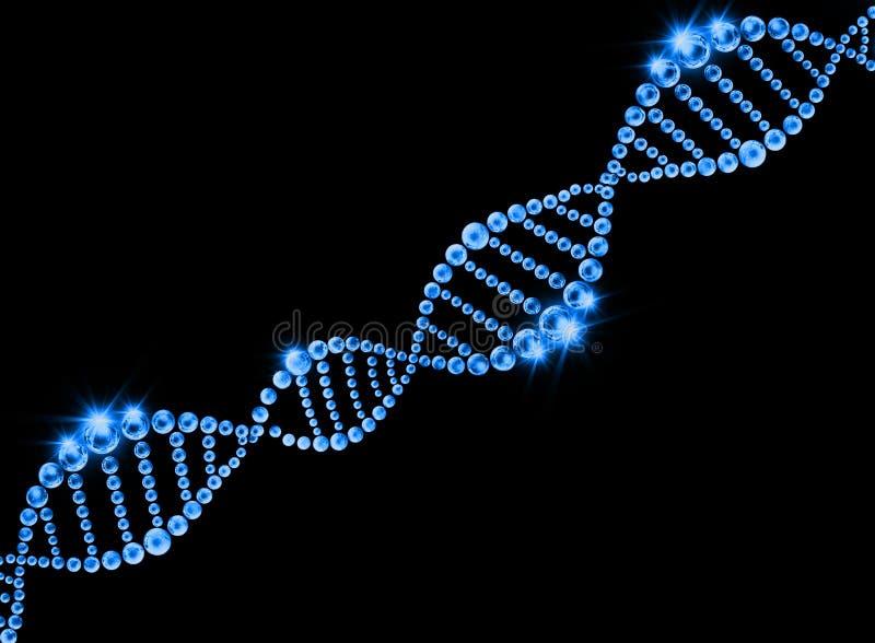 脱氧核糖核酸螺旋分子背景 皇族释放例证