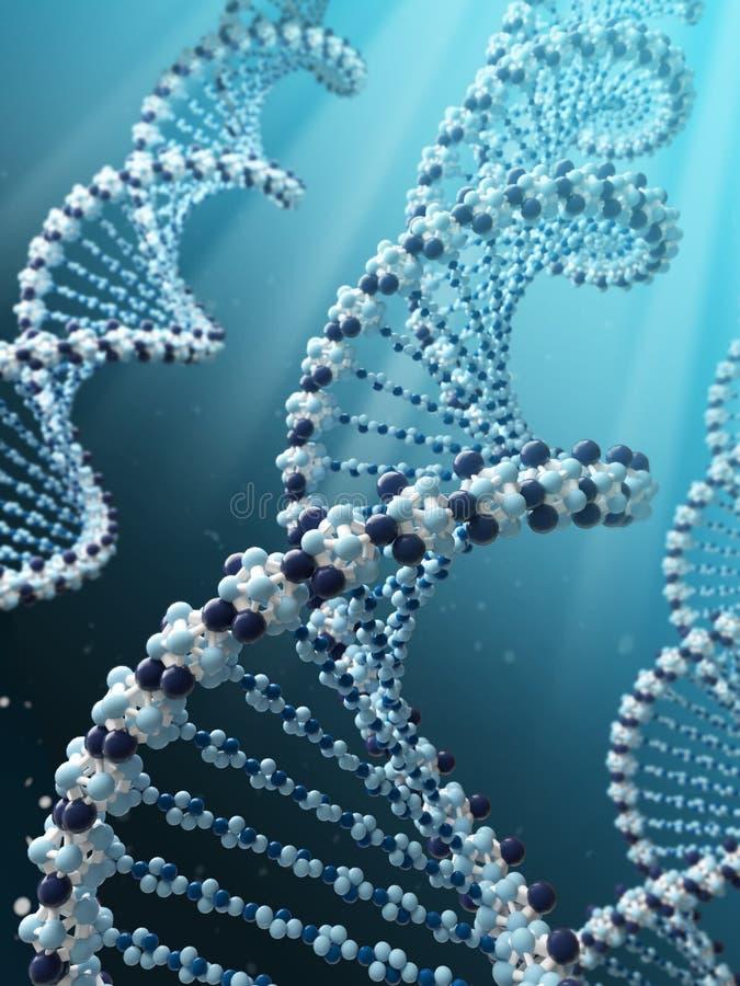 脱氧核糖核酸螺旋 向量例证