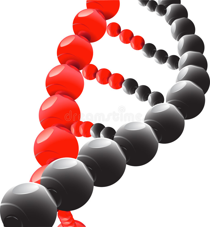 脱氧核糖核酸 皇族释放例证