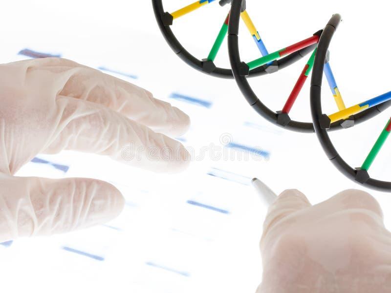 脱氧核糖核酸examing的透明度 免版税库存图片