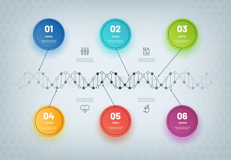 脱氧核糖核酸Infographic 分子链图,infographic医疗的步,企业工作流 基因模型摘要概念 库存例证