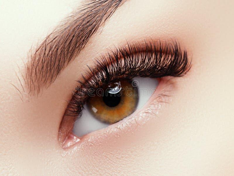 脸蛋漂亮构成 长的自然睫毛 完善的构成特写镜头 一部分的女性面孔 魅力鞭子和黑色 免版税库存照片