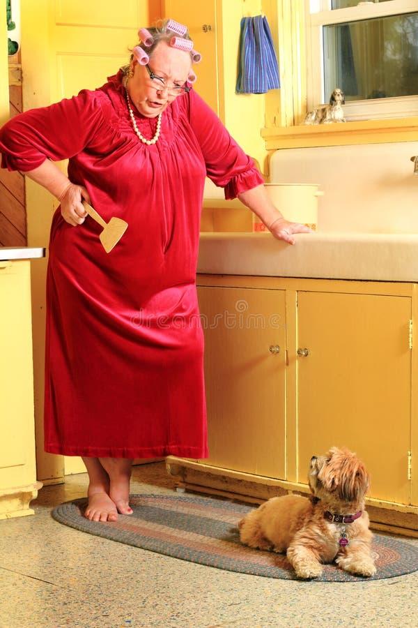 脾气坏的老婆婆,在麻烦的小狗 库存照片