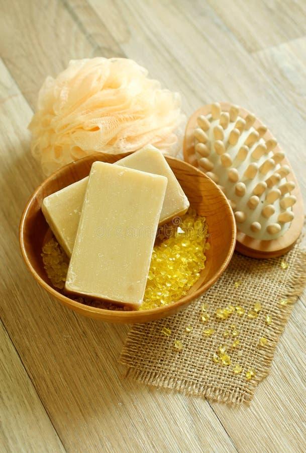 腌制槽用食盐木肥皂的海绵 免版税库存照片