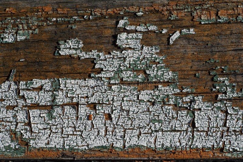 腐朽的木纹理 图库摄影