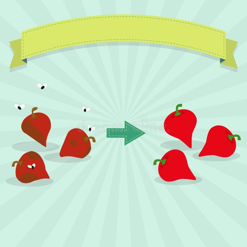腐烂和新鲜的胡椒噘嘴 向量例证