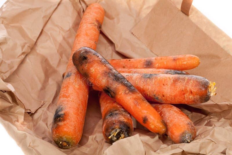 腐烂的红萝卜 被浪费的黑和发霉的菜 去foo 免版税图库摄影