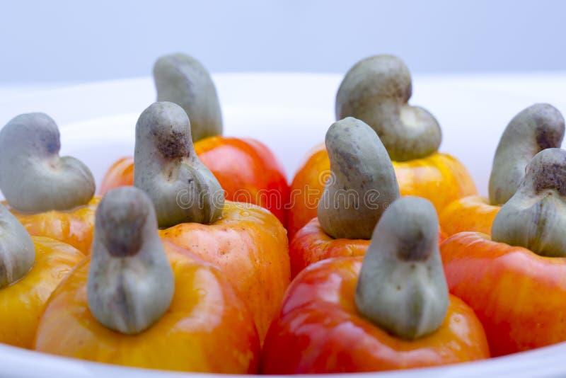 腰果是一个热带水果 库存照片