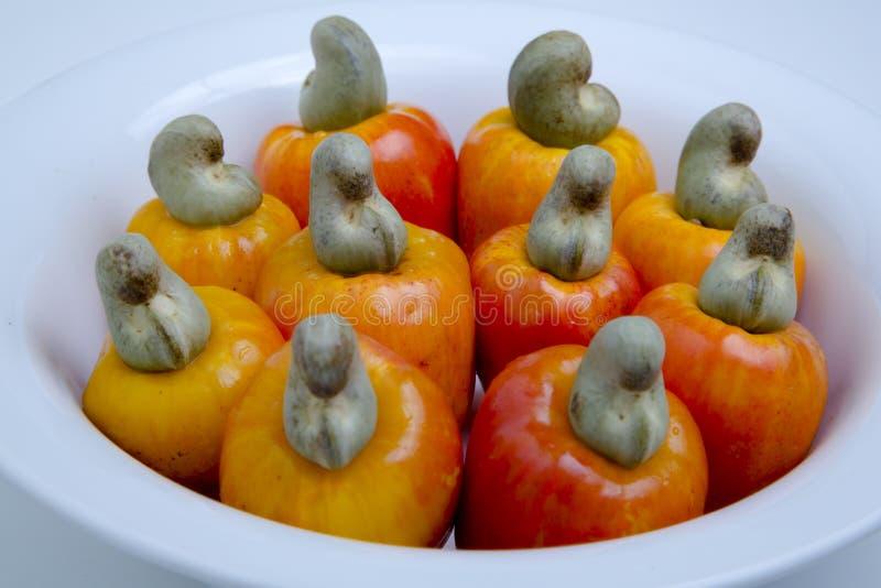 腰果是一个热带水果 免版税库存图片