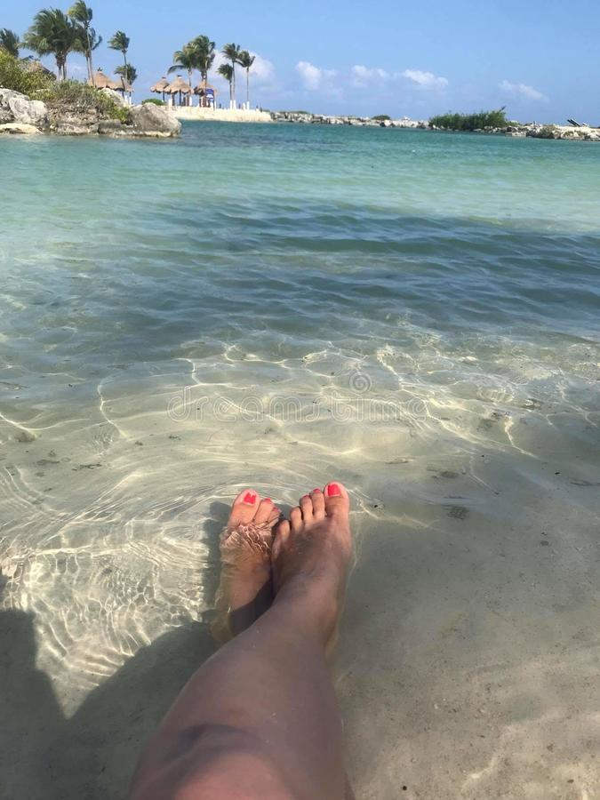 腿和海滩 库存图片