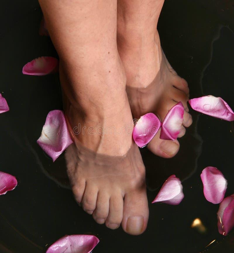 腿在与花瓣的水中 温泉 免版税库存图片
