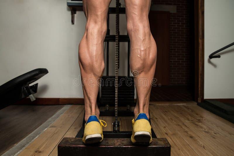 腿小牛的锻炼 库存照片
