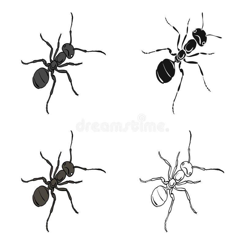 膜翅目的昆虫是蚂蚁 节肢动物动物蚂蚁唯一象在动画片样式传染媒介等量标志的库存 皇族释放例证
