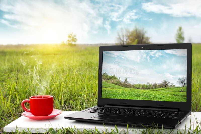 膝上型计算机和杯子在背景美丽如画的自然的热的咖啡 免版税图库摄影