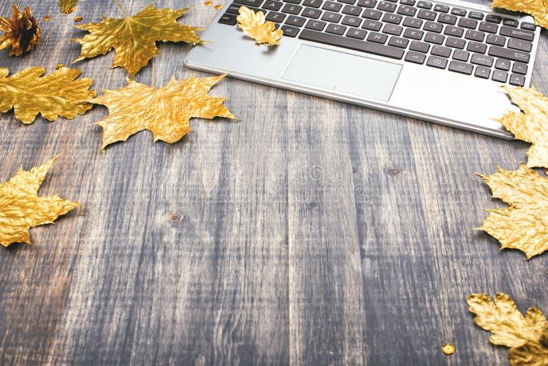 膝上型计算机键盘和一棵金黄槭树叶子 免版税库存图片