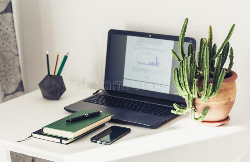 膝上型计算机,堆书,课本,泥罐的仙人掌植物在办公室学会概念的教育的企业背景中 图库摄影
