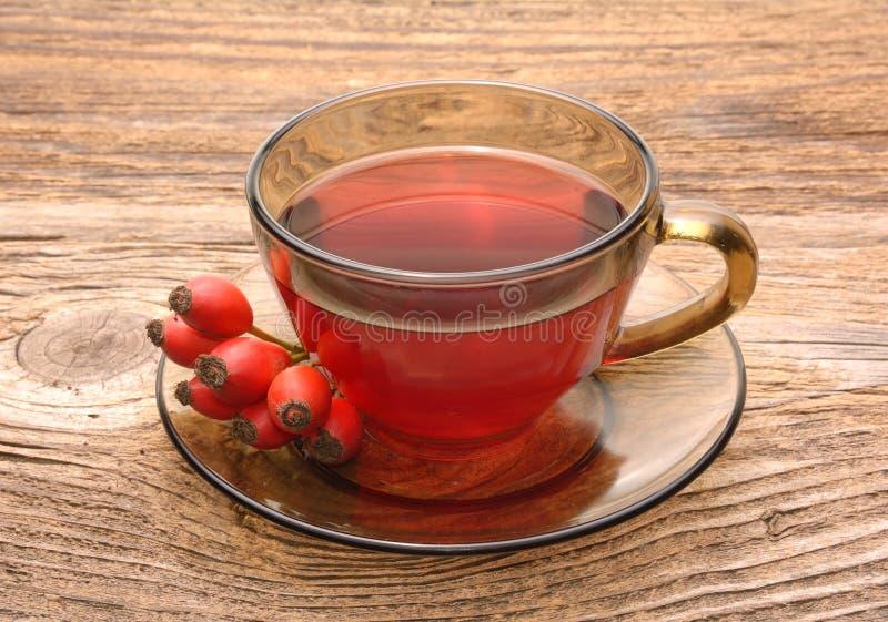 臀部玫瑰色茶 免版税图库摄影