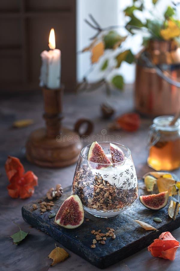自创格兰诺拉麦片强身糕用无花果、燕麦粥、杏仁、干蔓越桔和南瓜籽,健康快餐,水平 库存照片