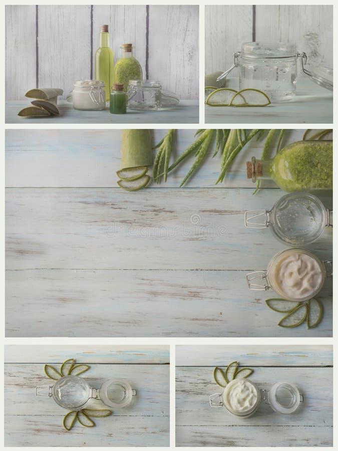 自创温泉拼贴画与自然成份的 芦荟维拉 库存图片