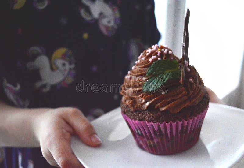 自创的杯形蛋糕 库存照片