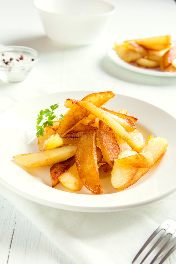 自创的炸薯条 免版税库存图片