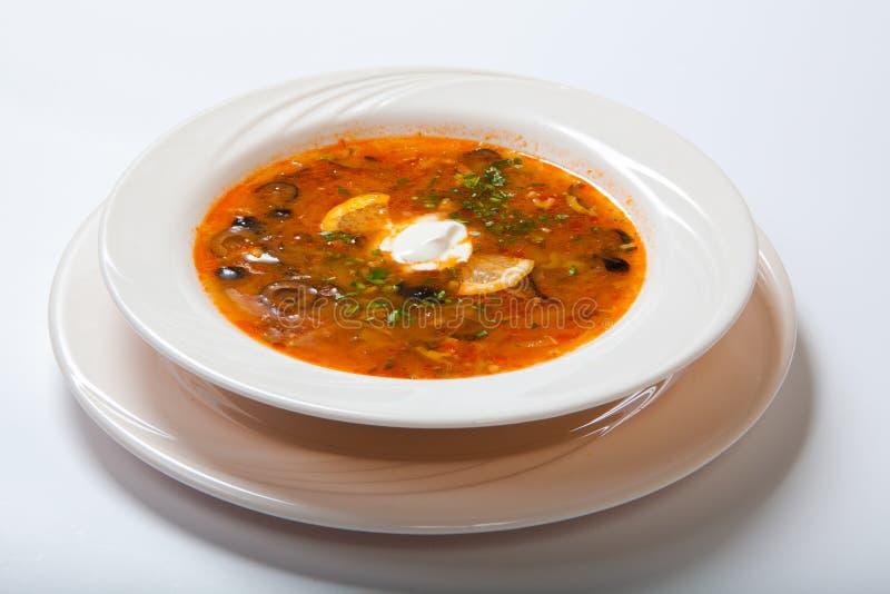 自创肉汤、索良卡或者藜科冈羊栖菜属植物 免版税图库摄影