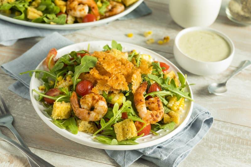 自创芝麻菜虾和麦片粥沙拉 库存照片