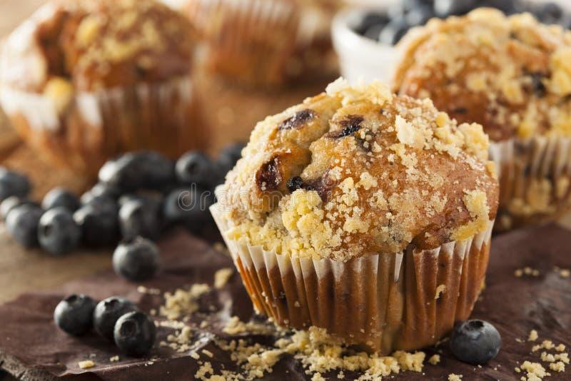 自创蓝莓松饼早餐 库存图片