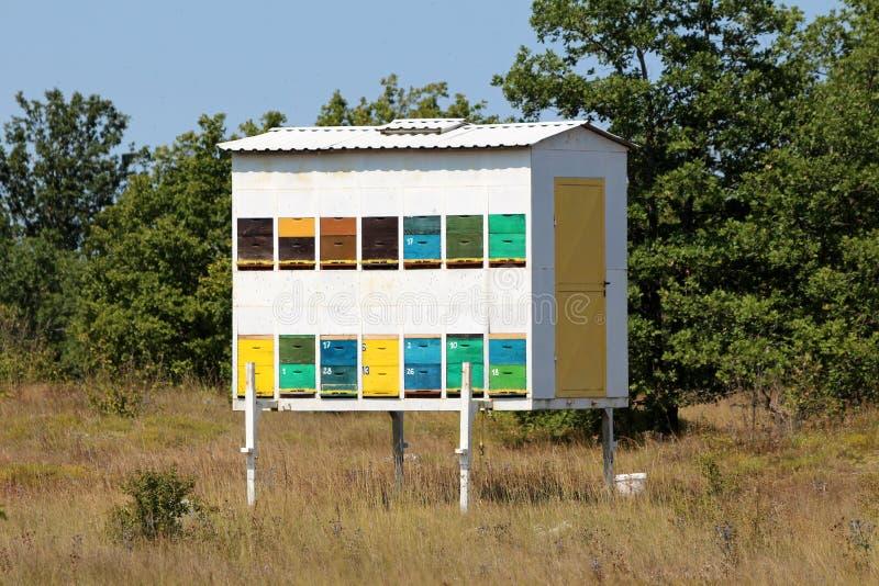 自创被即兴创作的后院五颜六色的蜂箱登上在暂时拖车和左在草甸包围与树和清楚的蓝色 免版税图库摄影