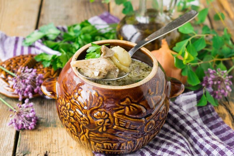 自创馄饨用在酸性稀奶油调味汁烘烤的酸性稀奶油调味汁的蚝蘑 r m 免版税库存照片