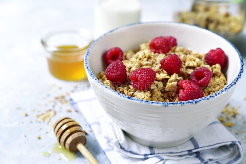 自创multicereal格兰诺拉麦片用新鲜的莓、蜂蜜和戴 库存照片