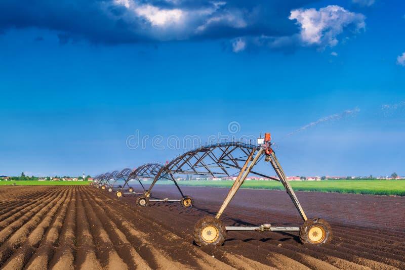 自动化种田灌溉运转中的洒水装置 免版税库存照片
