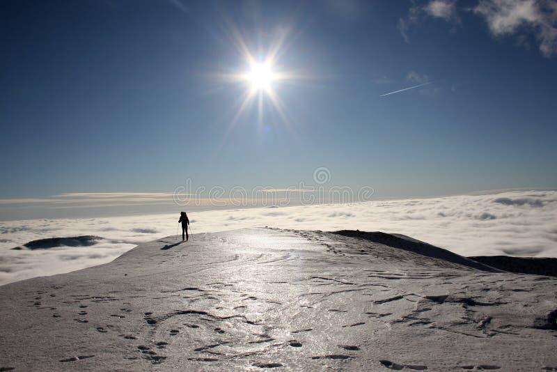 Download 他自己在地球和天堂之间 库存图片. 图片 包括有 横向, 天堂, 云彩, 体育运动, 反向, 芦荟, 成功 - 30334641