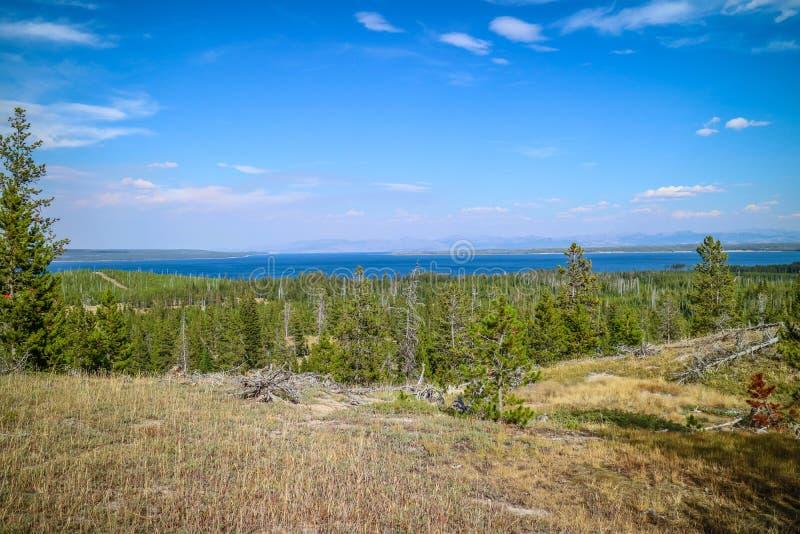 自然一个美好的俯视的看法在黄石国家公园,怀俄明 免版税库存照片